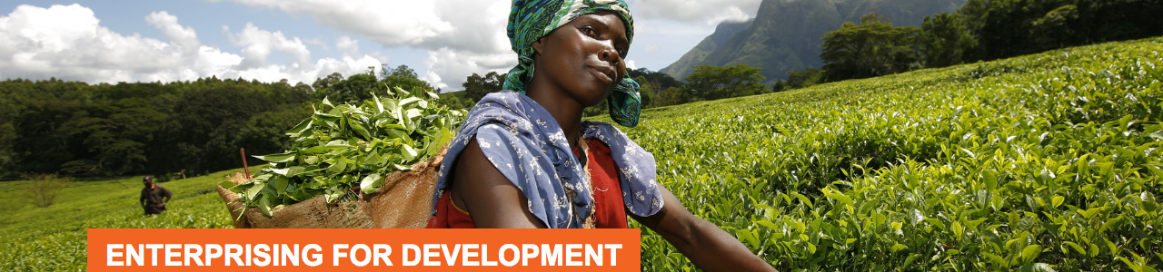 OXFAM Impact SME's Development Programme