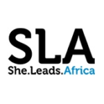 Accelerator program for early stage, women led startups in Nigeria