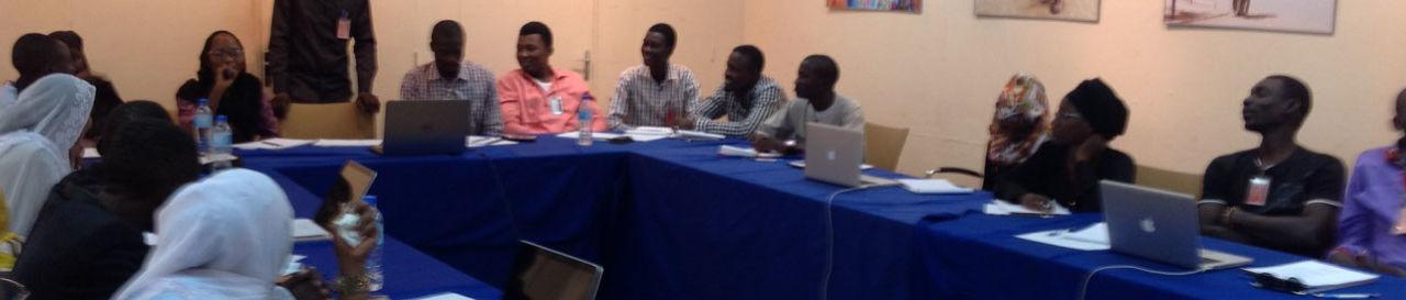 Niger Business Angels Network
