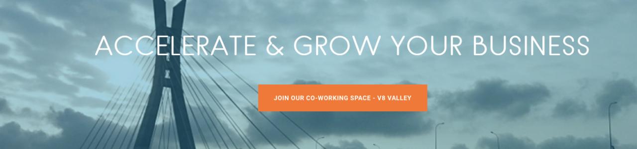 V8 Ventures