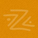 2018 Zambezi Prize - Partner image