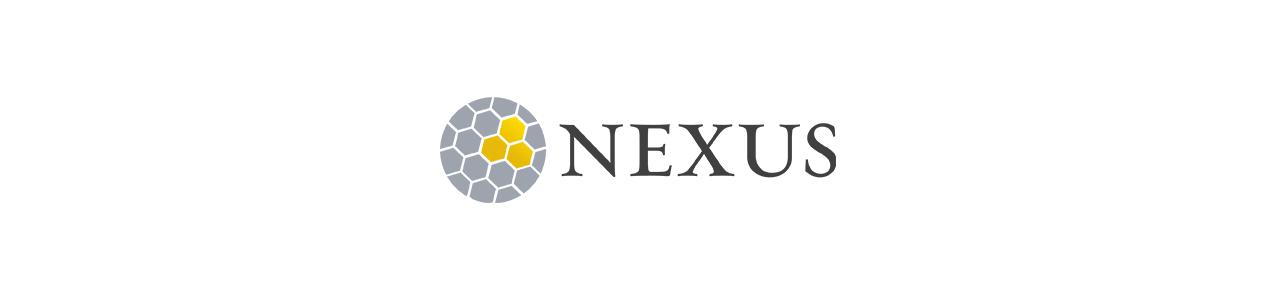 2018 NEXUS Africa Forum