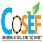 COSEF LLC