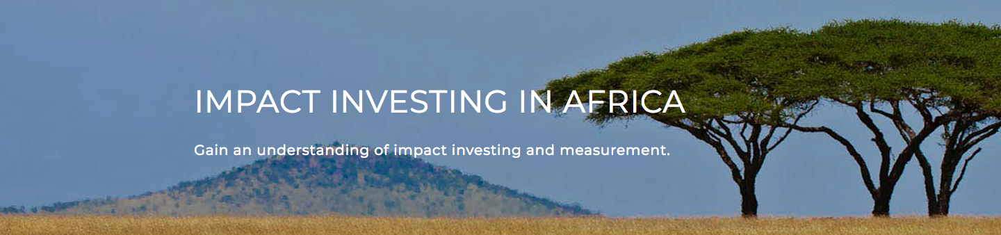 Impact Investing in Africa Executive Education Courses