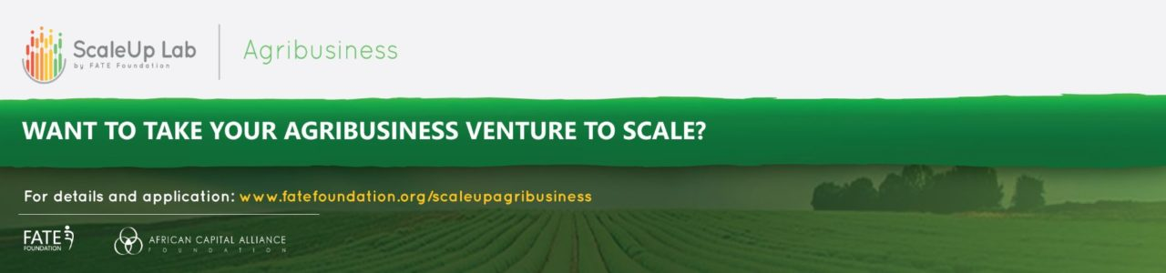 ScaleUp Agribusiness Accelerator Programme 2020