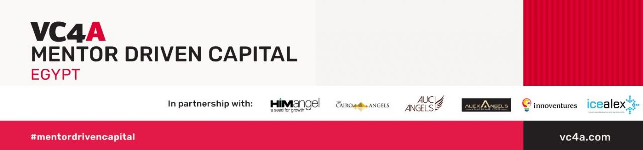 Virtual Mentor-Driven Capital program – Egypt 2021