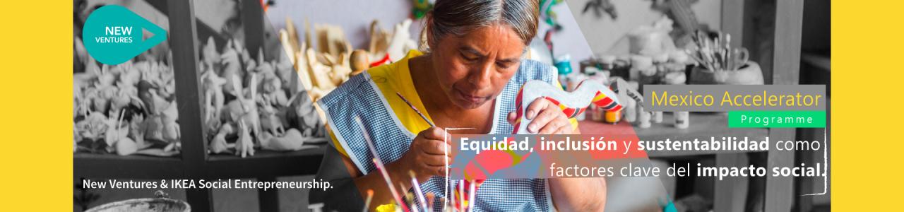 Mexico Accelerator Programme | IKEA Social Entrepreneurship