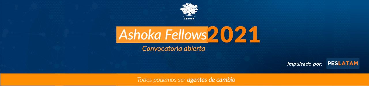 Ashoka Venture and Fellowship Program