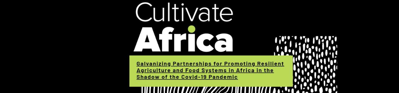 Cultivate Africa