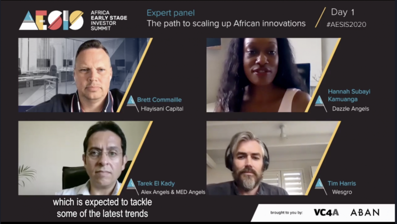 Summit screenshot of expert panel discussion AESIS2020