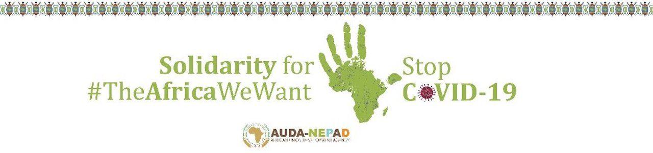 African Union Development Agency-NEPAD