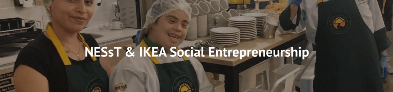 IKEA Social Entrepreneurship