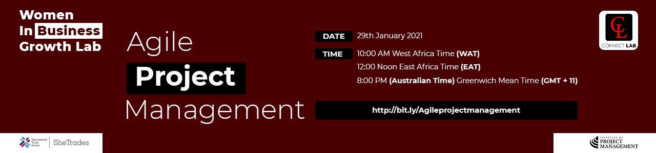 Agile Project Management – Webinar