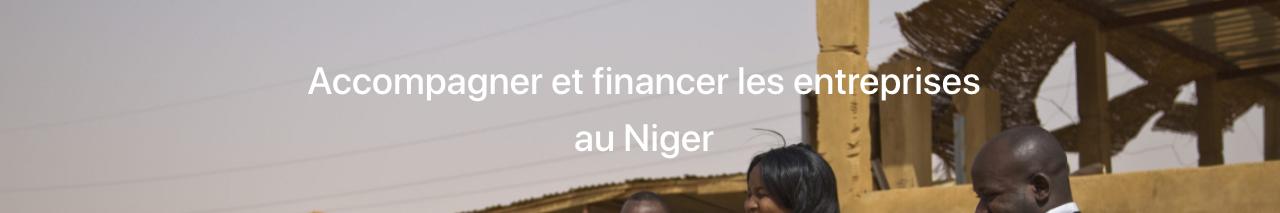 Sinergi Niger