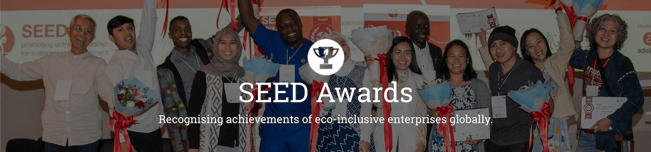 SEED Awards 2021