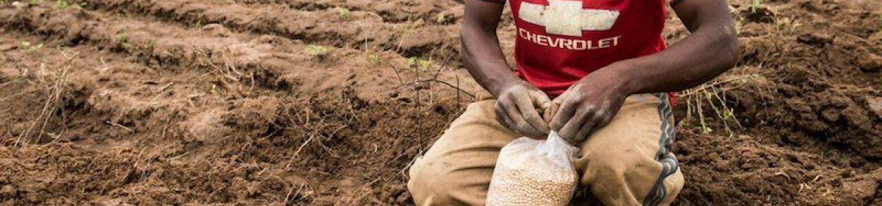 USAID/Nigeria COVID-19 Food Security Challenge 2021
