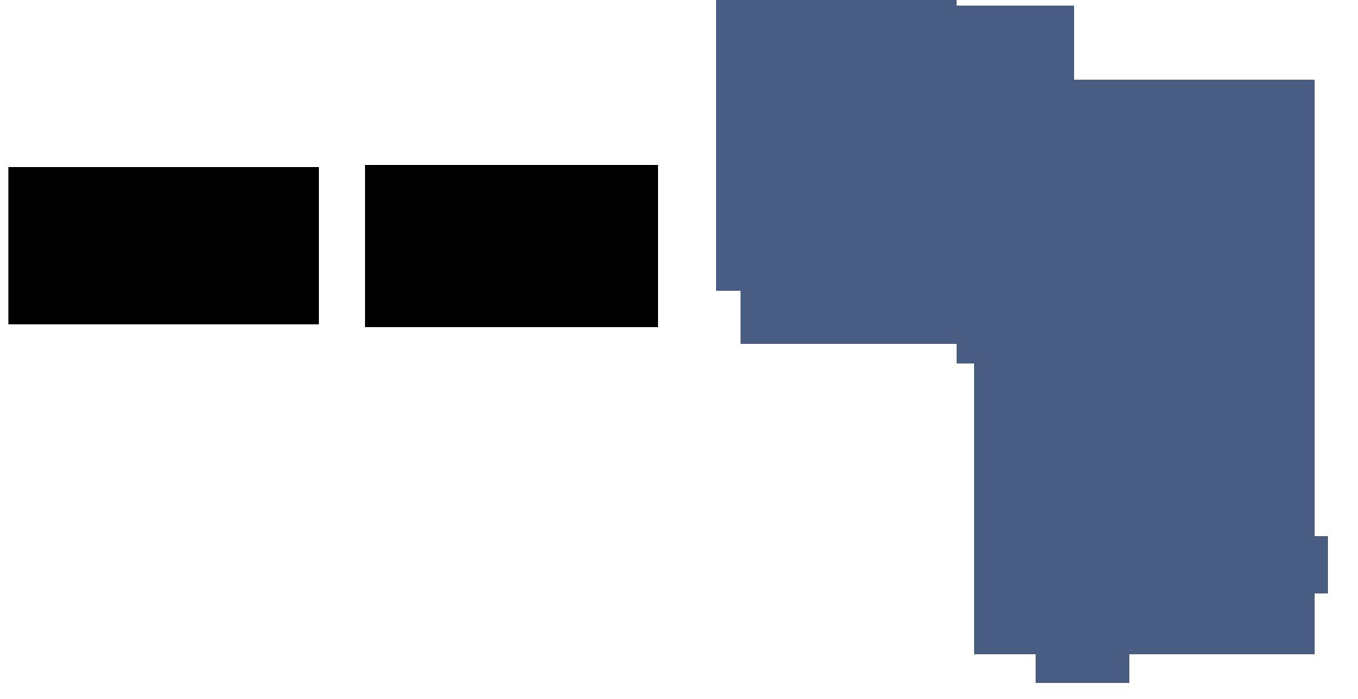 Logo of EMSA Emerging Markets Africa