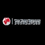 Logo The Tony Elumelu Foundation